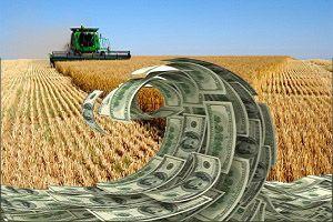 Чего ждать аграриям от колебаний курса доллара?