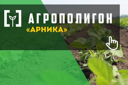 Arnika is the largest organic producer in Ukraine located in Poltava region