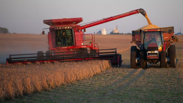 US farmers harvesting soybean