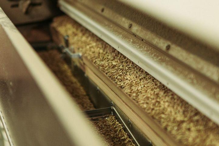 Процесс очистки зерна