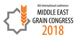 Middle East Grain Congress 2018