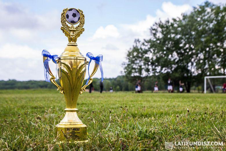 Кубок победителя футбольного турнира