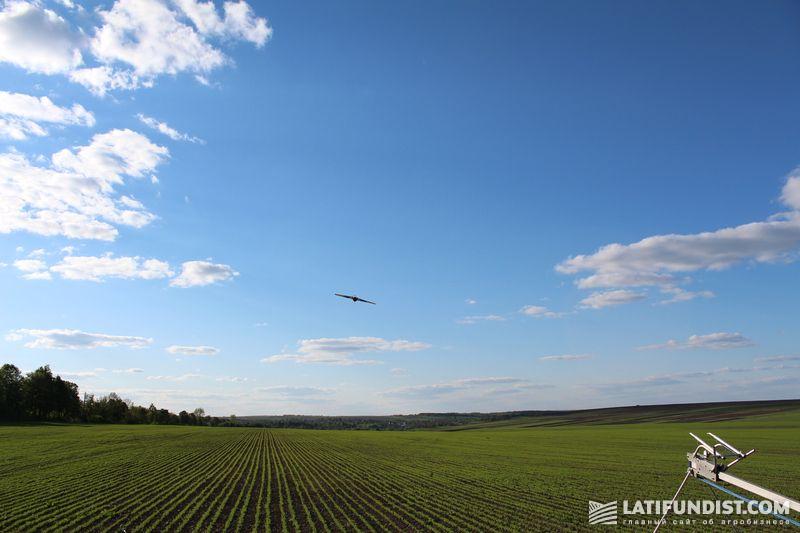 Беспилотный летательный аппарат над полями «Сварог Вест Груп»