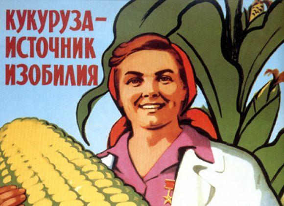 Выращивание кукурузы в ссср