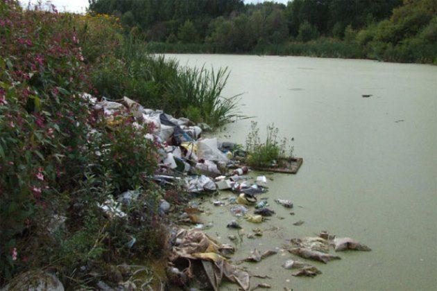 любом случае екологічний стан та очищення озера ялпуг весы поосного взвешивания