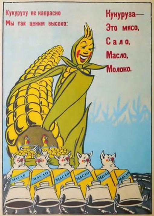 Украина может собрать рекордный урожай кукурузы - Цензор.НЕТ 22