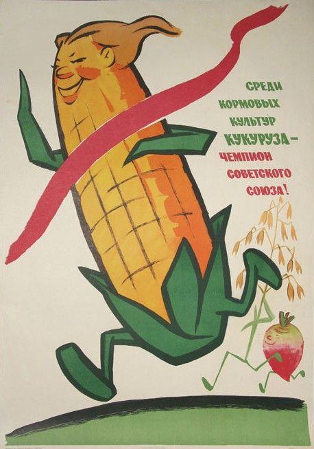 Выращивание кукурузы в ссср 100