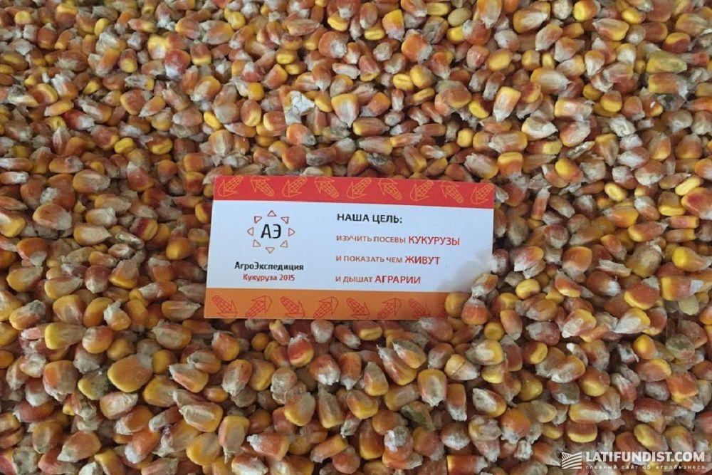 АгроЭкспедиция 10 — Кукуруза 2015
