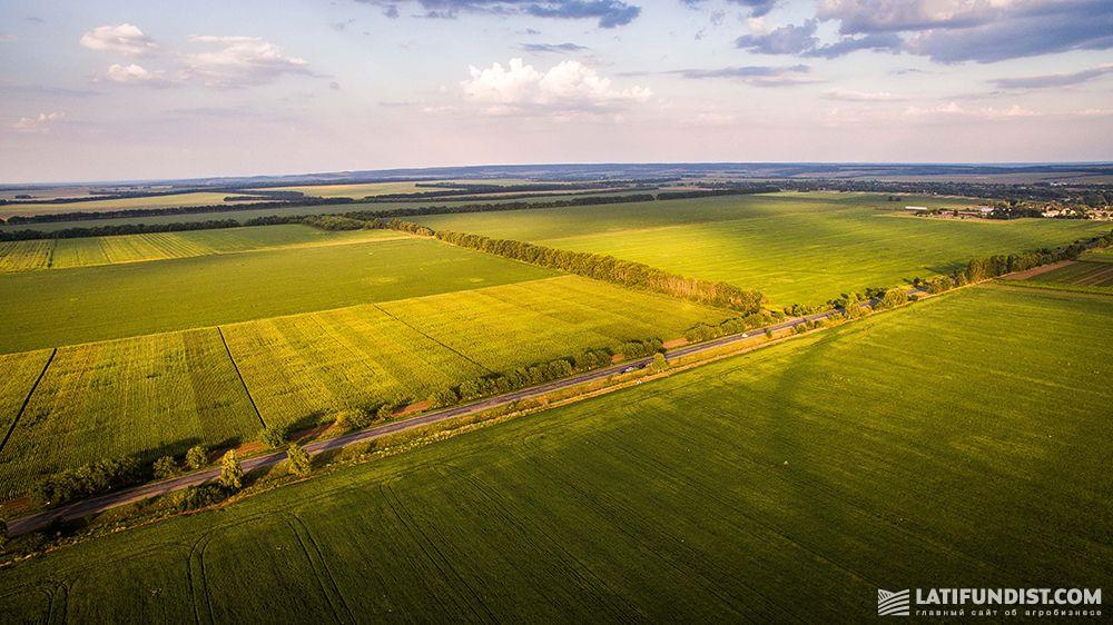 В Украине за год стремительно сократились площади под органическим земледелием