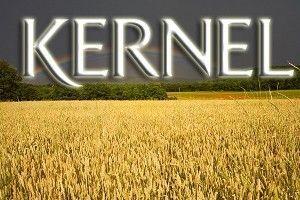 Кернел вложит $200 млн в строительство комплекса по хранению и переработке сельхозкультур