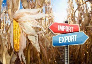 Экспорт украинского зерна в Китай вырос вчетверо