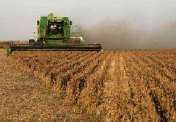 садовые участки урожайность сои в амурской области Ростов-на-Дону