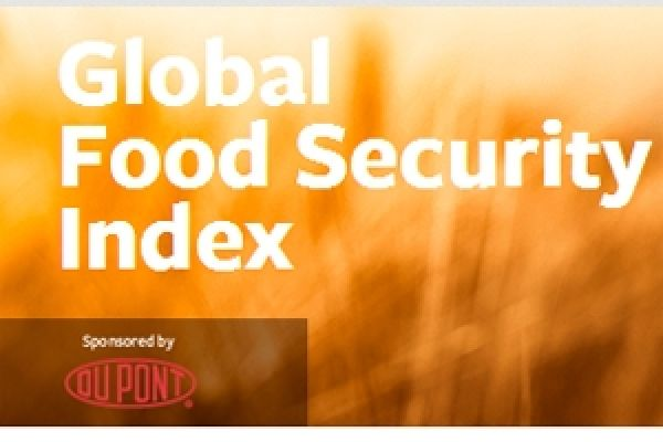 global food security index The global food security index 2012: an assessment of food affordability, availability and quality is an economist intelligence unit publication, commissioned by dupont this fi ndings and methodology paper.