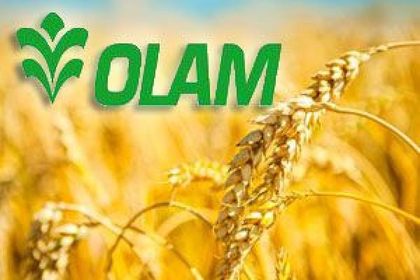 olam international 'we don't take cash': is this the future of money landmark bond sales hit by emerging markets downturn can oil prices extend their iran-fuelled rally.