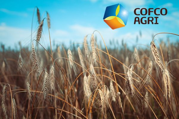 COFCO exported 3 million tons of agri commodities from