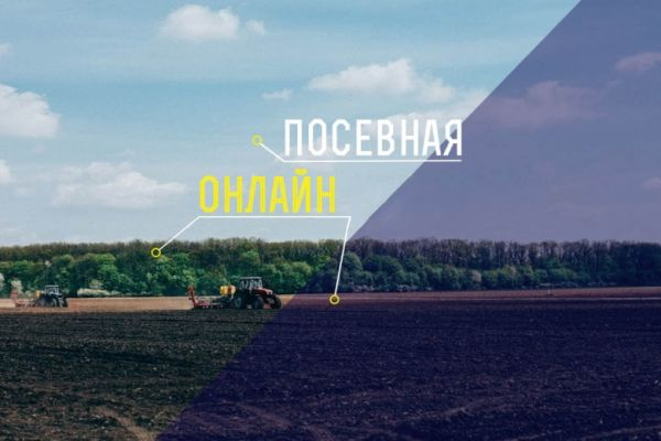 Sowing campaign in Ukraine