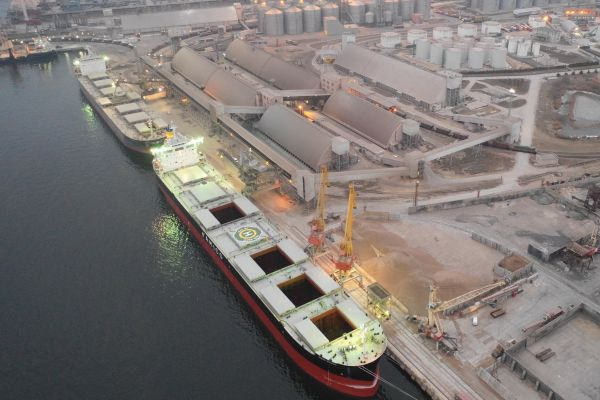 E[port of grain from Ukraine