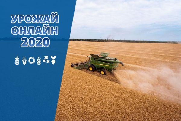 Crop progress in Ukraine