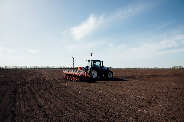 Winter crops planting