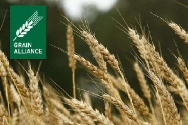 Grain Alliance увеличил мощности по хранению зерна на 31%