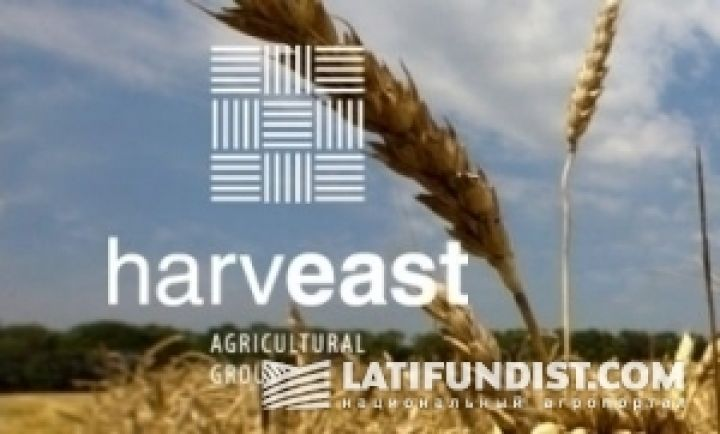 Смарт-Холдинг и СКМ поделили HarvEast