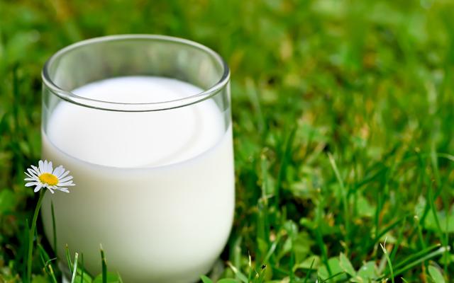 Сметана, молоко, сир, масло.... Шокуючі подробиці підробки молочних продуктів (ВІДЕО)