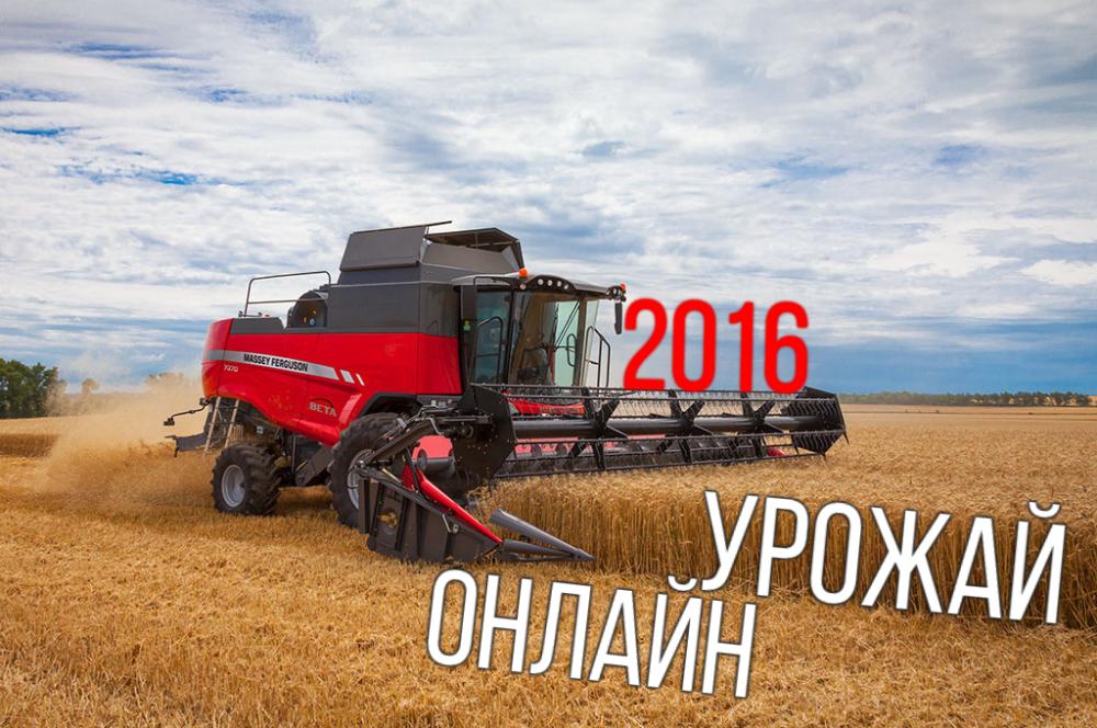 ВСаратовской области собрано 90 процентов подсолнечника