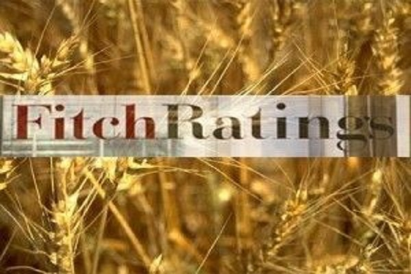 Fitch повысило рейтинги украинской столицы иХарькова до«B-»