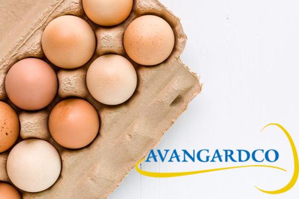 Крупнейший производитель яиц сократил ущерб в4 раза
