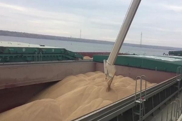 Осенью 2016г.экспорт украинской кукурузы вырос в20 раз