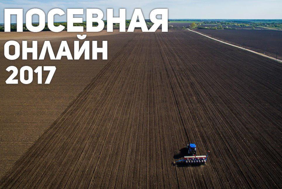 ВУкраинском государстве посев яровых зерновых проведен наплощади 5,5 млн га