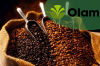 Olam coffee