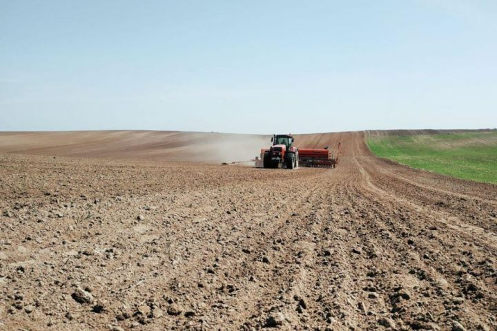 Spring crops sowing in Ukraine