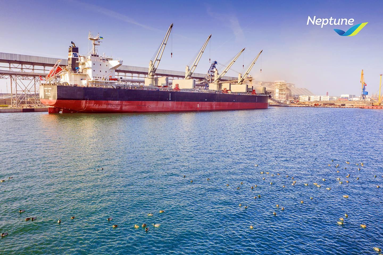 Neptune Grain Terminal loading Pacific Award bulker. Pivdenny Port, Ukraine