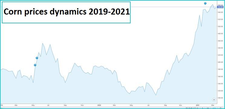 Corn prices dynamics 2019-2021