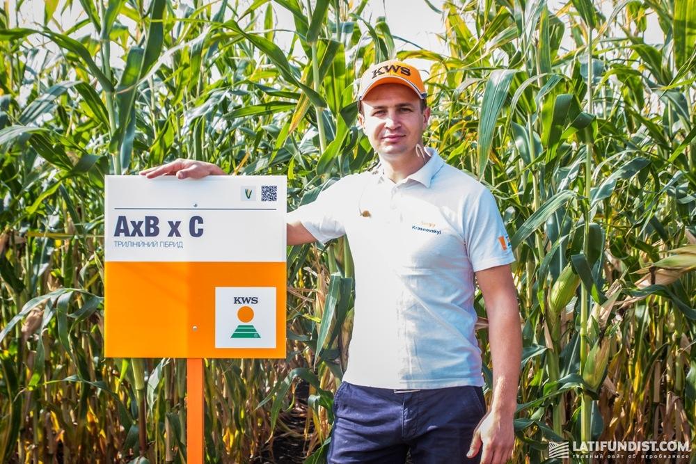 Сергей Красновский, продакт-менеджер отдела кукурузы и масличных культур «КВС-УКРАИНА»