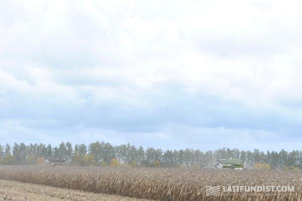 У Claas Lexion 770 технические проблемы