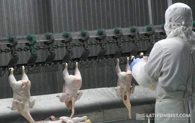 Цех Мироновской птицефабрики МХП