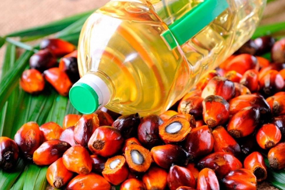 Украина получает стандартное пальмовое масло, которое употребляется во всем мире