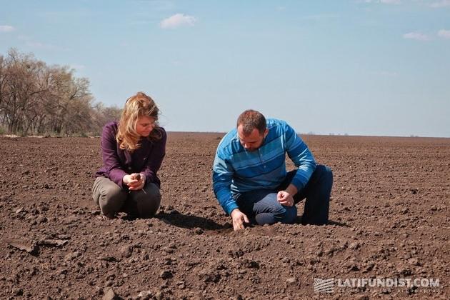 Проверка правильности высадки семян кукурузы
