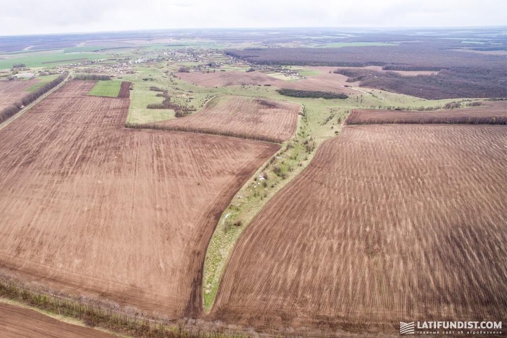 Каждый год после уборки урожая озимой пшеницы предприятие проводит анализ почвы