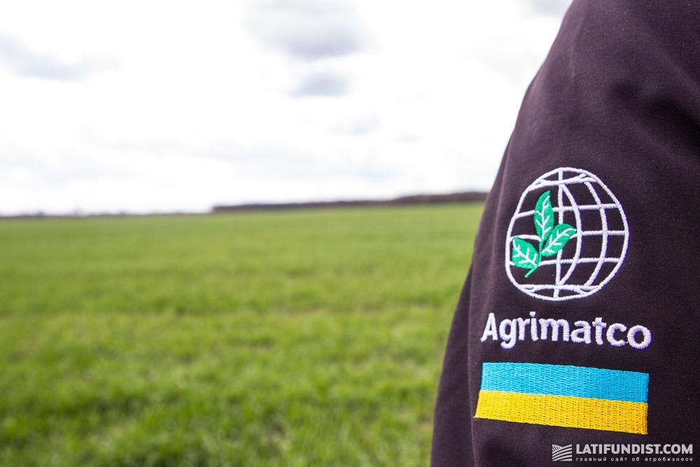 Оценка эксперта компании «Агриматко-Украина»: гербицид сработал плохо