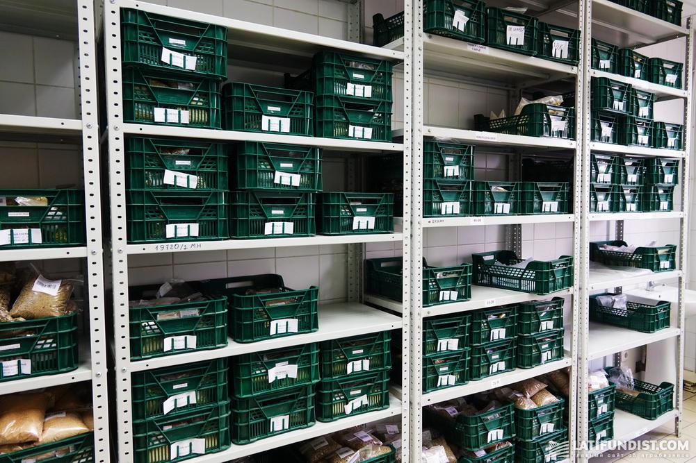 Пункт хранения образцов выпущенной продукции, где они сберегаются в течение полугода