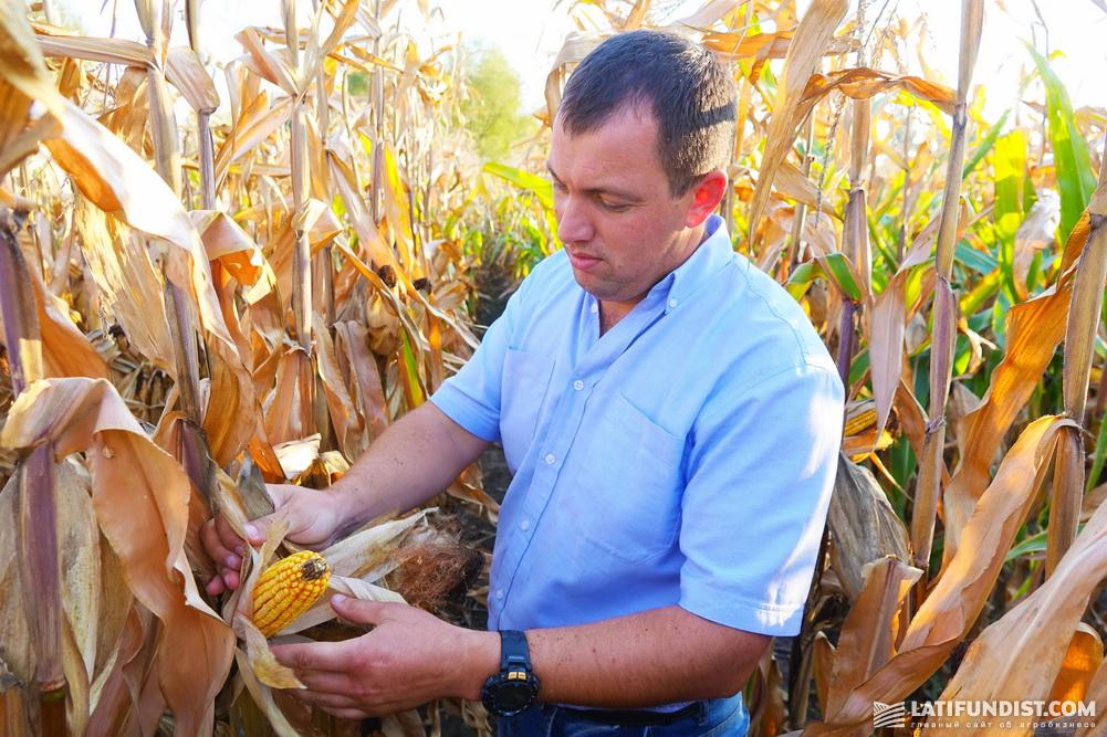 Олег Пащенко, директор Бориспольского отделения холдинга «Агро-Регион»