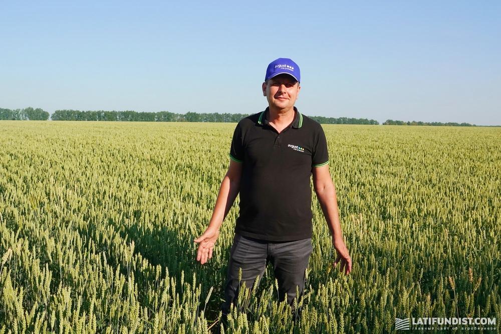 Андрей Задорожний, региональный представитель компании «Август-Украина»