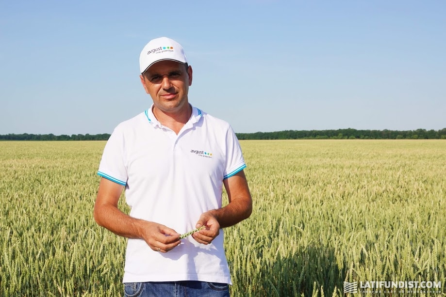 Станислав Есип, менеджер отдела маркетинга «Август-Украина»