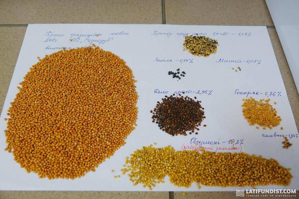 Анализ качества сырья в компании «Агрофирма «Поле»