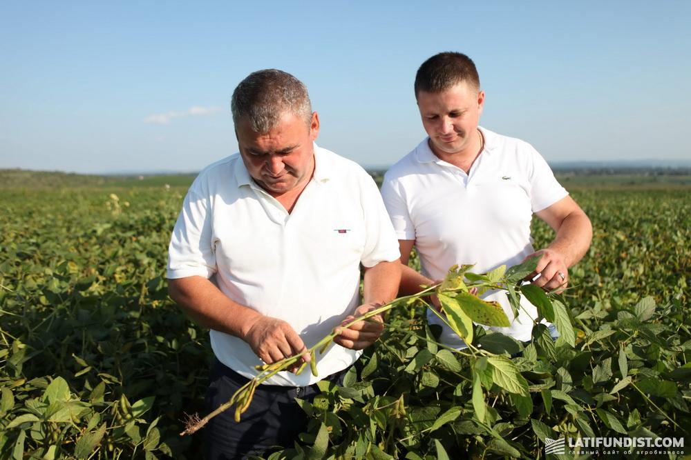Участники АгроЭкспедиции изучают посевы сои