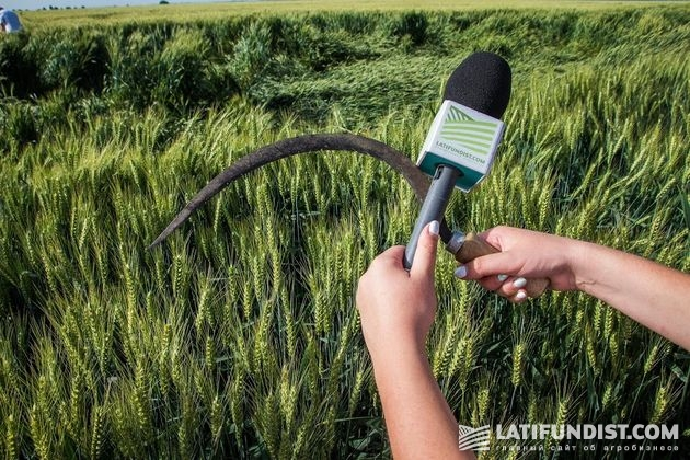 АгроЭкспедиция 17 — Пшеница 2016