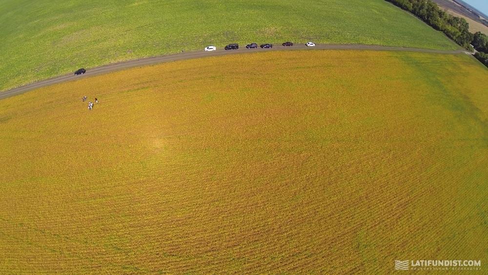 Вид на поля «Сварог Вест Груп»